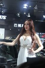 巴博斯的人间胸器 2013深港澳车展 美女车模